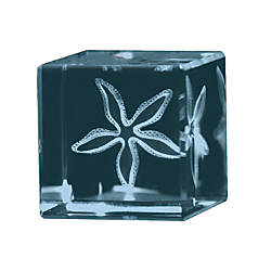 Starfish 3D Crystal Cube Paperweight