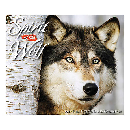"""Willow Creek Press Page-A-Day Daily Desk Calendar, Spirit Of The Wild, 5-1/2"""" x 6-1/4"""", January to December 2020, 08966"""