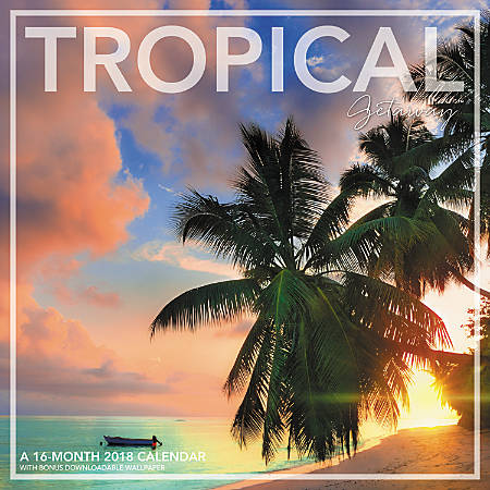 Landmark tropical getaway monthly wall calendar 12 x 12 for Tropical getaways in december