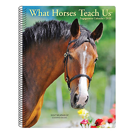 """Willow Creek Press Weekly Engagement Calendar, 7"""" x 9"""", What Horses Teach Us, January to December 2020, 09345"""