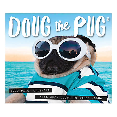 """Willow Creek Press Page-A-Day Daily Desk Calendar, Doug The Pug, 5-1/2"""" x 6-1/4"""", January to December 2020, 08850"""