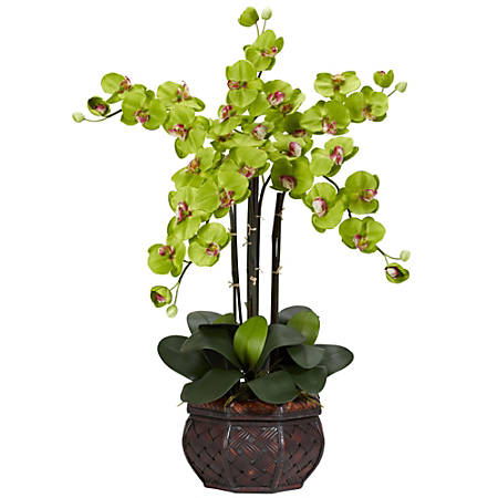 "Nearly Natural 31""H Silk Phalaenopsis Arrangement With Decorative Pot, Green"