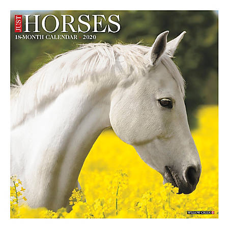"Willow Creek Press Animals Monthly Wall Calendar, 12"" x 12"", Horses, January To December 2020"