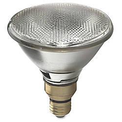 GE Lighting 60W Halogen PAR38 Floodlight