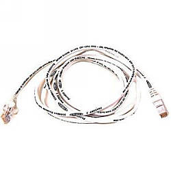 Belkin Cat 6 Bulk Cable
