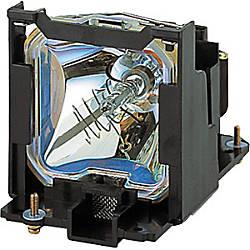 Panasonic Replacement Lamp