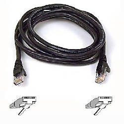 Belkin Cat 6 UTP Patch Cable