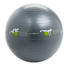 Gaiam Restore Self Guided Stability Ball