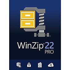 WinZip 22 Pro Download Version