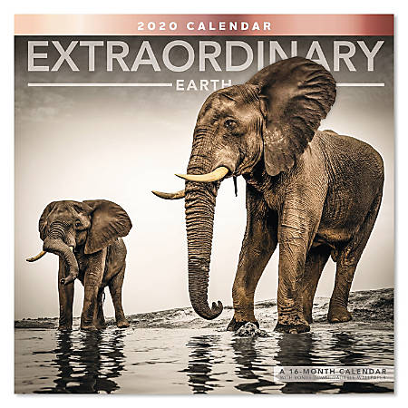 "Mead® Extraordinary Earth Monthly Wall Calendar, 12"" x 12"", January To December 2020, ODE31810"