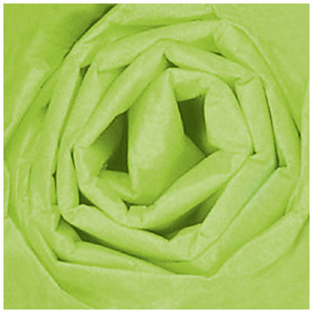 "Partners Brand Citrus Green Gift Grade Tissue PaPer Sheets, 20"" x 30"", 480 Sheets"