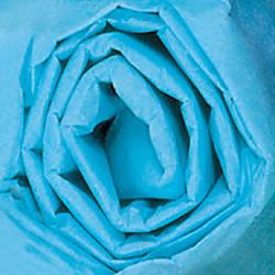 Partners Brand Turquoise Gift Grade Tissue