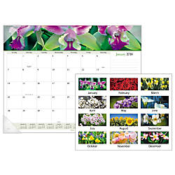 AT A GLANCE Visual Organizer Floral