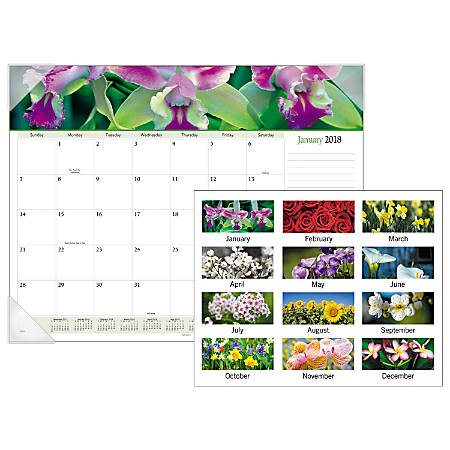 """AT-A-GLANCE® Visual Organizer Floral Panoramic Monthly Desk Pad Calendar, 22"""" x 17"""", 30% Recycled, January To December 2018 (8905-18)"""