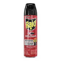 raid antroach killer spray spray kills ants cockroaches waterbug palmetto bug silverfish carpet. Black Bedroom Furniture Sets. Home Design Ideas