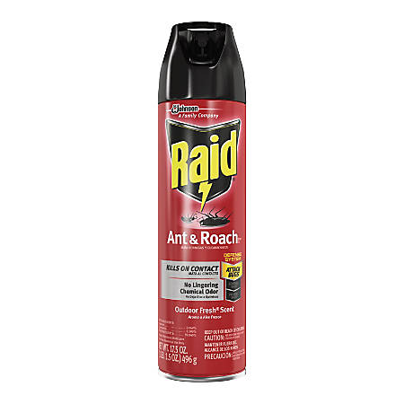 Raid Ant/Roach Killer Spray - Spray - Kills Ants, Cockroaches, Waterbug, Palmetto Bug, Silverfish, Carpet Beetle, Crickets, Earwig, Spider, Lady Beetle, Stink Bug, ... - 17.50 fl oz - Clear