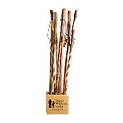 Brazos Walking Sticks Cube Display Cane