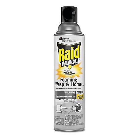 Raid Max Foaming Wasp & Hornet Killer, 13-Oz Spray