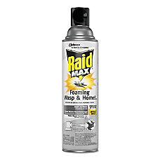 Raid Max Foaming Wasp Hornet Killer