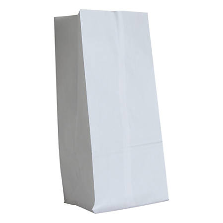 "General Paper Grocery Bags, #16, 16""H x 7 3/4""W x 4 13/16""D, White, Pack Of 500 Bags"