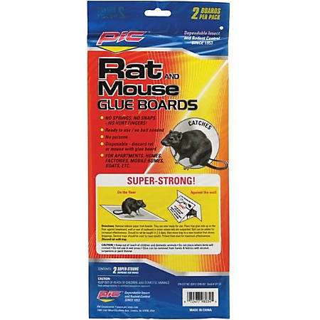 PIC Glue Mouse & Rat Boards - 2 / Pack