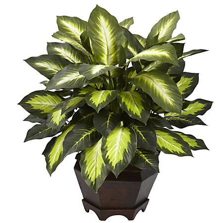 """Nearly Natural 22""""H Silk Triple Golden Dieffenbachia With Wood Vase, Green"""