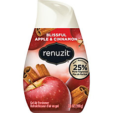 Renuzit Adjustable Air Freshener Apples Cinnamon