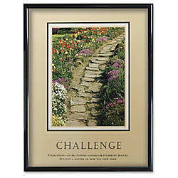 Advantus Challenge Framed Motivational Print 24