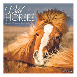 "Willow Creek Press Animals Monthly Wall Calendar, 12"" x 12"", Wild Horses, January To December 2020"