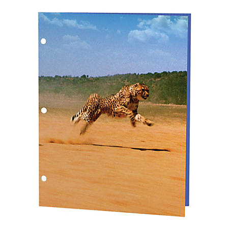 "Kittrich 3-D Motion Graphics Fashion Portfolio, 8 1/2"" x 11"", Wildlife"