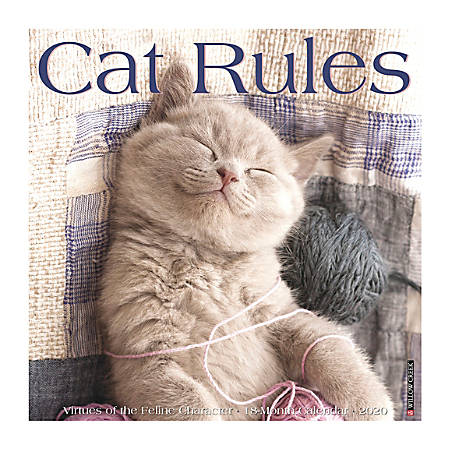 "Willow Creek Press Animals Monthly Wall Calendar, 12"" x 12"", Cat Rules, January To December 2020"