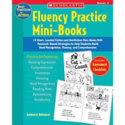Scholastic Fluency Mini Book Grade 1