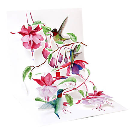 """Up With Paper Everyday Pop-Up Greeting Card, 5-1/4"""" x 5-1/4"""", Hummingbirds"""