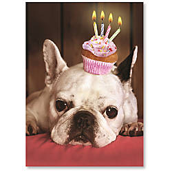 Viabella Fun Birthday Greeting Card With