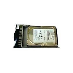 IBM 1 TB Hard Drive SATA