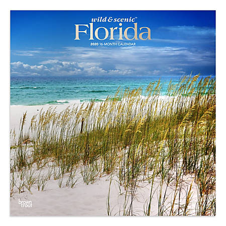 """Brown Trout Monthly Wall Calendar, Florida, 24"""" x 12"""", January To December 2020"""