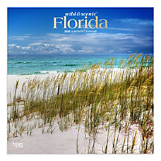 Brown Trout Monthly Wall Calendar Florida