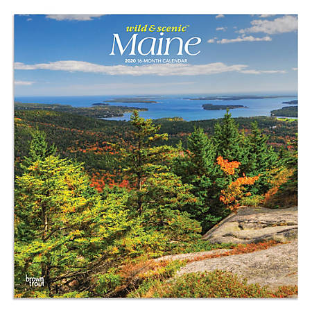 """Brown Trout Monthly Wall Calendar, Maine, 24"""" x 12"""", January To December 2020"""
