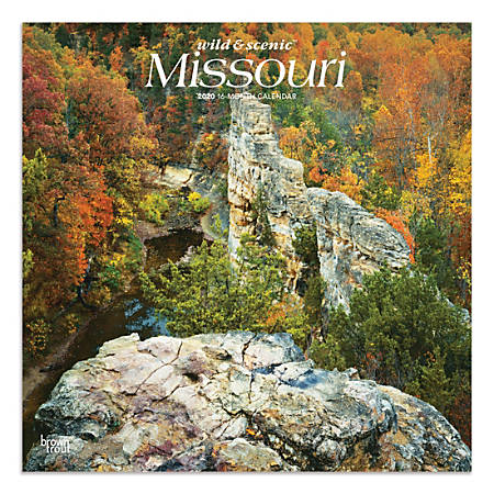 """Brown Trout Monthly Wall Calendar, Missouri, 24"""" x 12"""", January To December 2020"""