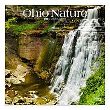 Brown Trout Monthly Wall Calendar Ohio