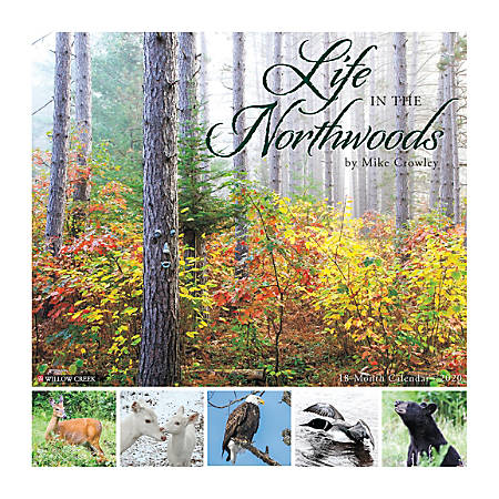"""Willow Creek Press Scenic Monthly Wall Calendar, 12"""" x 12"""", Life In The Northwoods, January To December 2020"""