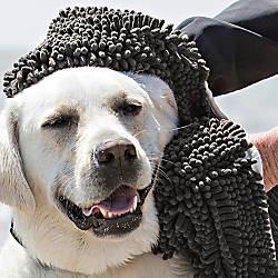 Soggy Doggy Super Shammy