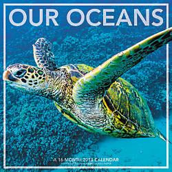 Landmark Our Oceans Monthly Wall Calendar