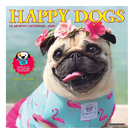 """Willow Creek Press Animals Monthly Wall Calendar, 12"""" x 12"""", Happy Dogs, January To December 2020"""