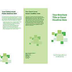 Customizable Trifold Brochure Green Checks
