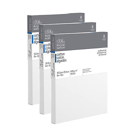 """Winsor & Newton Professional Cotton-Stretched Traditional Canvases, 10"""" x 8"""", White, Pack Of 3"""