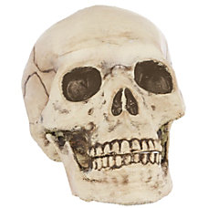 Amscan Plastic Halloween Jointed Mouth Skull