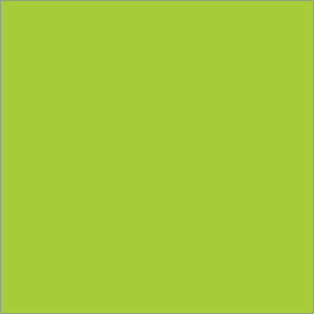 "Tape Logic® Write™On Inventory Labels, DL638J, Square, 4"" x 4"", Fluorescent Green, Roll Of 500"