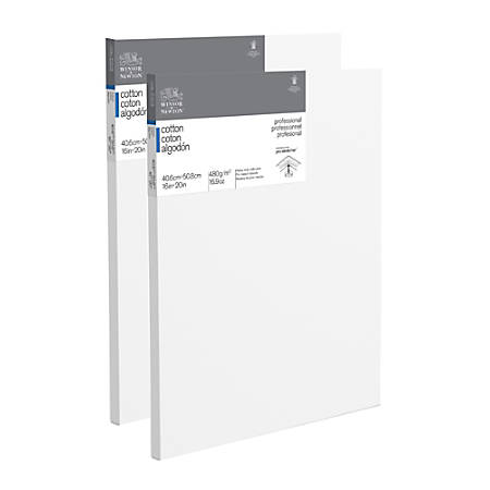 "Winsor & Newton Professional Cotton-Stretched Traditional Canvases, 20"" x 16"", White, Pack Of 2"