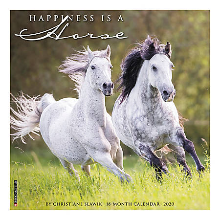 "Willow Creek Press Monthly Wall Calendar, 12"" x 12"", Happiness Is A Horse, January To December 2020, 06597"